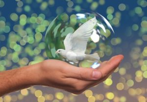peace hand holding dove